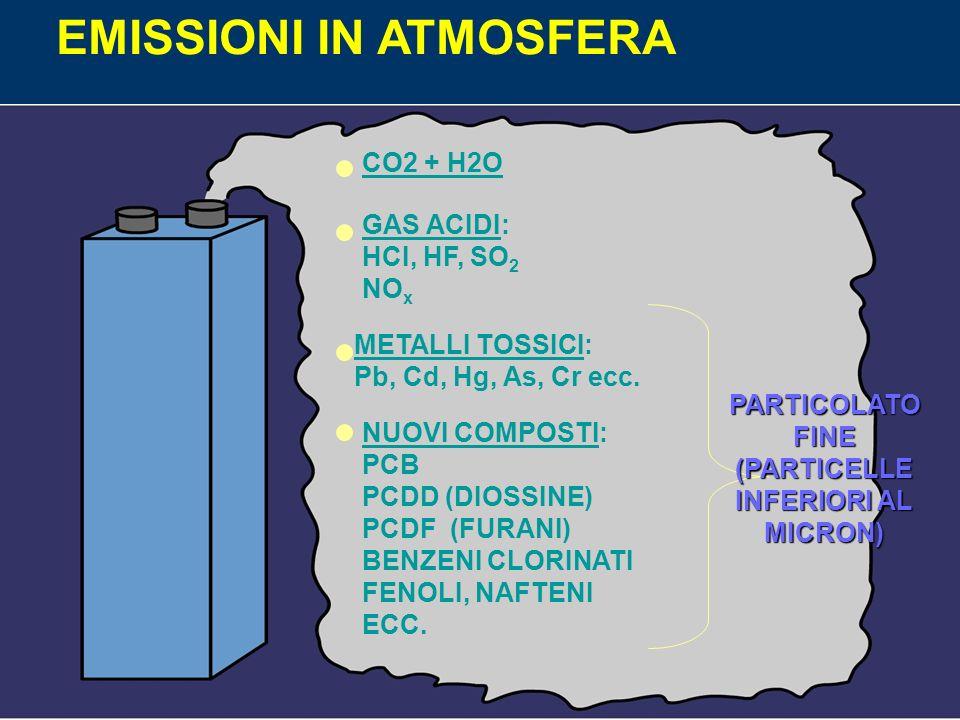 DIOSSIONE La struttura chimica