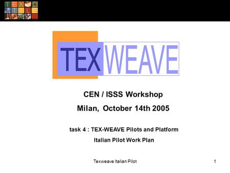 Texweave Italian Pilot1 task 4 : TEX-WEAVE Pilots and Platform Italian Pilot Work Plan CEN / ISSS Workshop Milan, October 14th 2005.