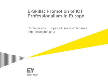 E-Skills: Promotion of ICT Professionalism in Europe Commissione Europea – Direzione Generale Impresa ed Industria.