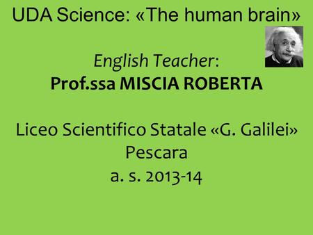 UDA Science: «The human brain» English Teacher: Prof