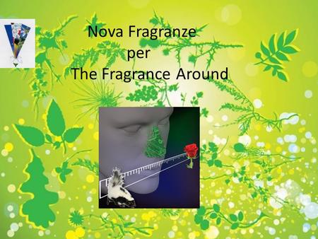 Fragranze e profumi Nova Fragranze per The Fragrance Around per