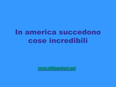 In america succedono cose incredibili www.wildmadcat.net.