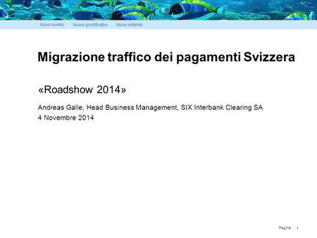 Pagina Migrazione traffico dei pagamenti Svizzera 1 «Roadshow 2014» Andreas Galle, Head Business Management, SIX Interbank Clearing SA 4 Novembre 2014.