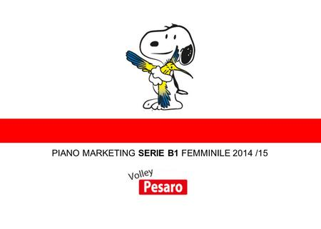 PIANO MARKETING SERIE B1 FEMMINILE 2014 /15 ENTRA NEL MONDO DEL VOLLEY.