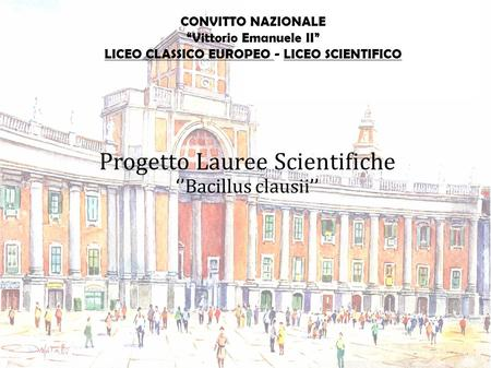 Progetto Lauree Scientifiche
