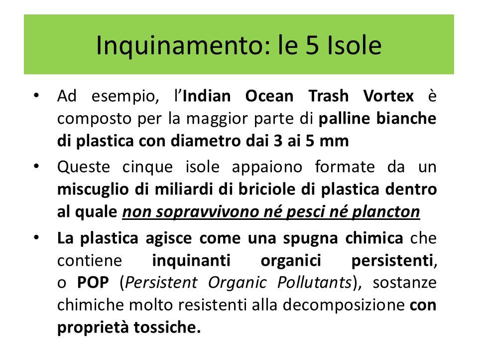 Il più grande vortice al mondo è quello nel nord del Pacifico, chiamato Pacific Trash Vortex, o anche Grande chiazza di immondizia del Pacifico (Great Pacific Garbage Patch) Caratteristiche Estensione: > 1.400.000 Km² (almeno due volte lestensione del Texas), forse 10.000.000 Km² Profondità: 30 metri Composizione: 3,5 milioni di tonnellate di sola plastica Inquinamento: le 5 Isole