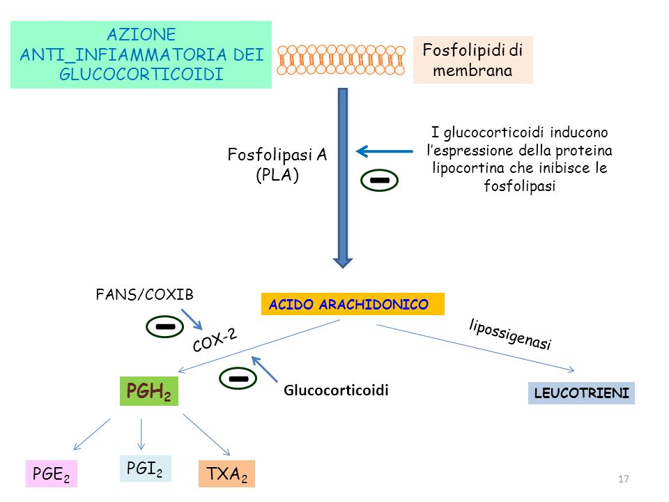 Antinfiammatori steroidei.