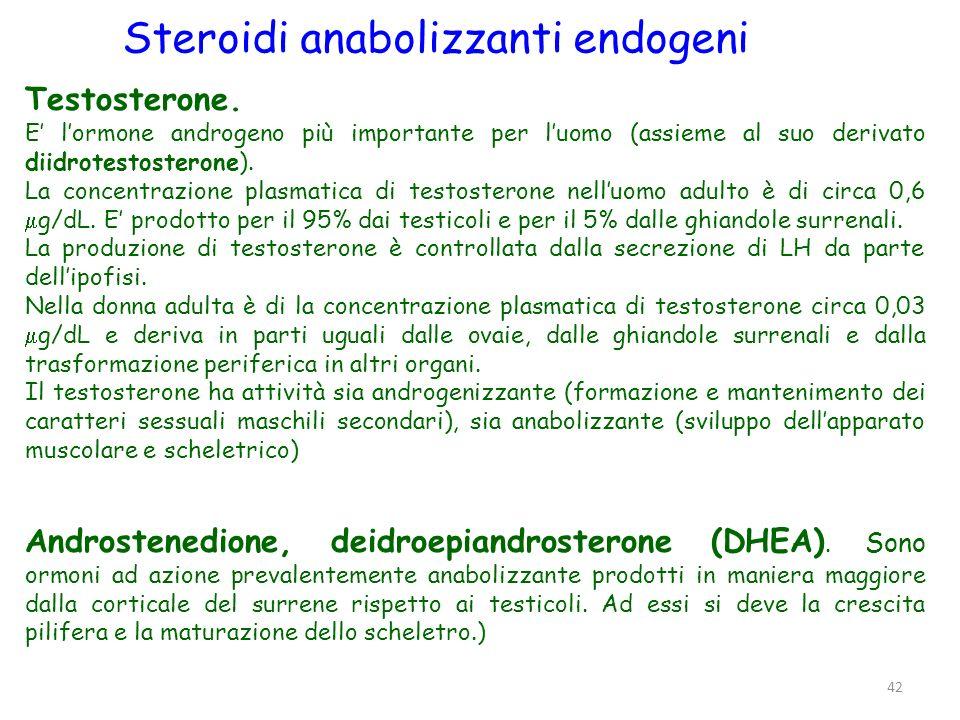 Sintesi del testosterone testicolo LS Cellule del Sertoli Cellule di Leydig Ipotalamoipofisi ant.
