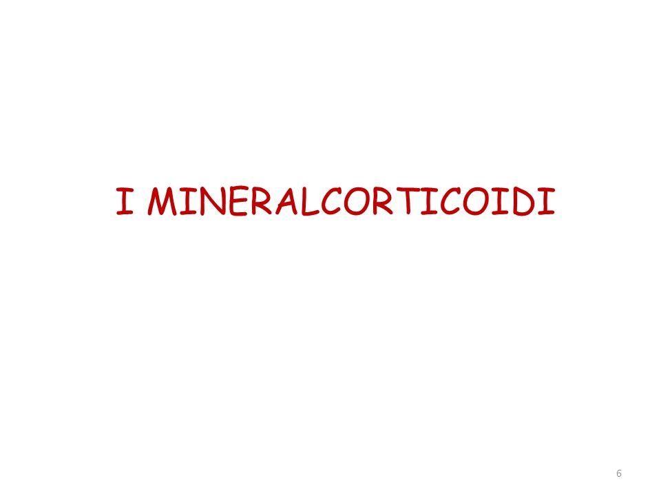 7 ALDOSTERONE-DEOSSICORTICOSTERONE.Sono i mineralcorticoidi più importanti nelluomo.