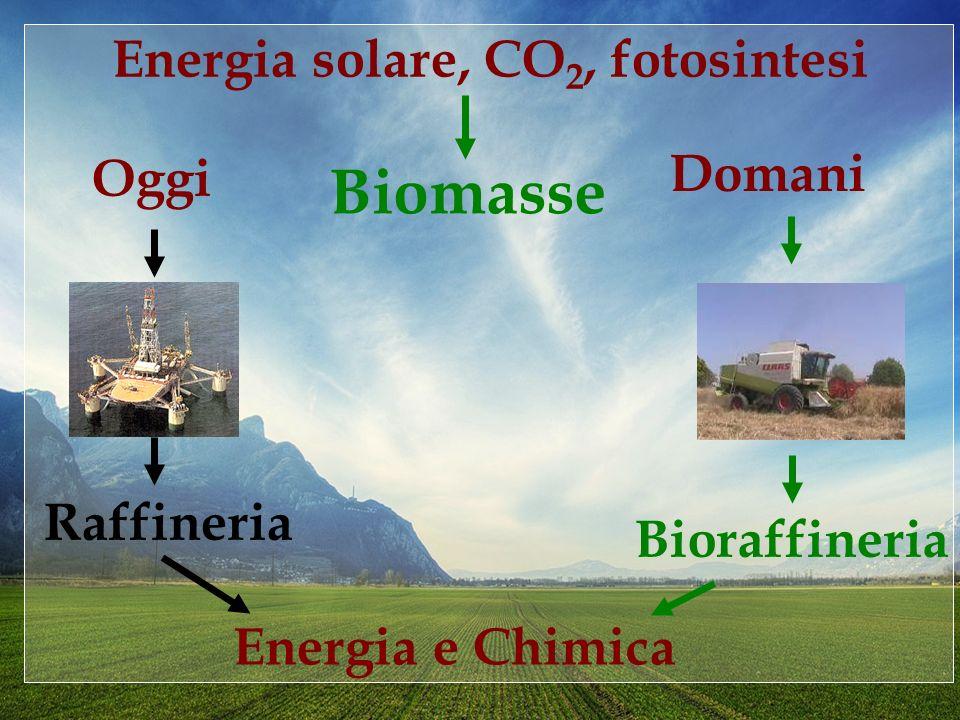 Necessità di definire una produzione industriale e agricola basata su nutrienti tecnici biodegradabili, rinnovabili, compostabili ed ipotossici LIndustria Biologica