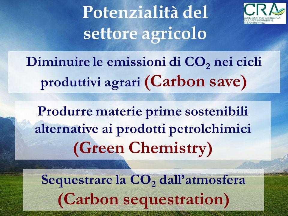 Il ruolo Carbon save: i Bilanci Ambientali Ad ogni input della fase di coltivazione si associa una valutazione del rilascio nellambiente di kg CO 2 eq/kg di prodotto - Prodotto utile - Biomassa totale INPUT OUTPUT Ad ogni output si associa la CO2 fissata dalle piante