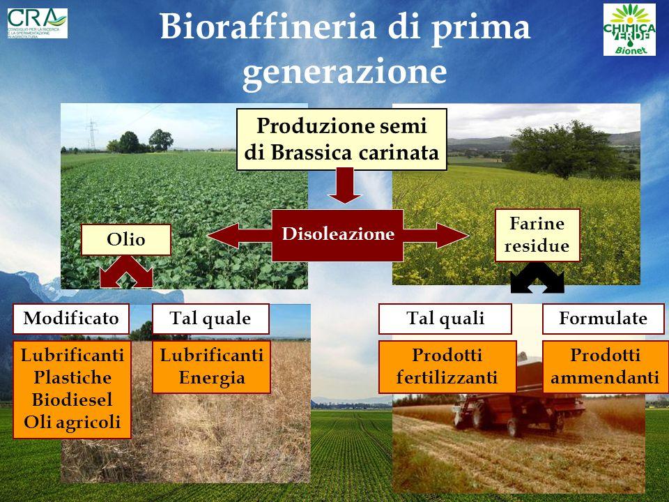 Energia solare, CO 2, fotosintesi Biomasse Energia e Chimica Oggi Raffineria Domani Bioraffineria