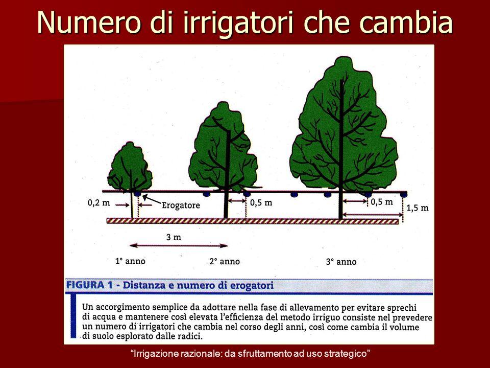 Limitare gli sprechi Irrigazione razionale: da sfruttamento ad uso strategico
