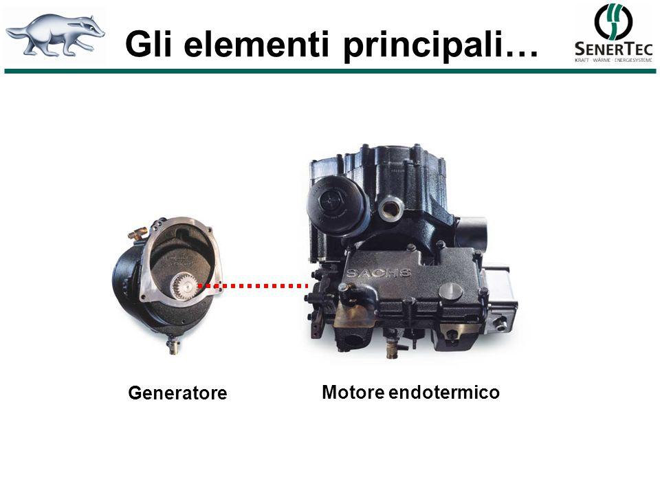 Regolatore MSR2 Scambiatore calore fumi di scarico Motore a 4 tempi monocilindrico Generatore asincrono raffreddato ad acqua Lunità Dachs HKA
