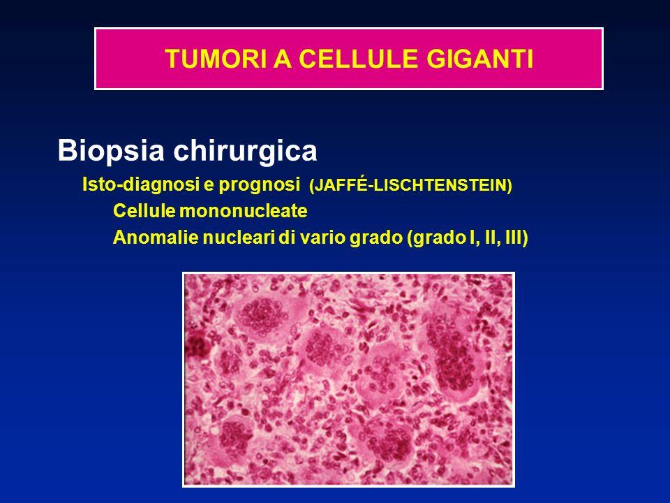 Biopsia chirurgica Isto-diagnosi e prognosi (JAFFÉ-LISCHTENSTEIN) Cellule mononucleate Anomalie nucleari di vario grado (grado I, II, III) Diagnosi di evolutività impossibile da estrapolare dai risultati anatomo-patologici.