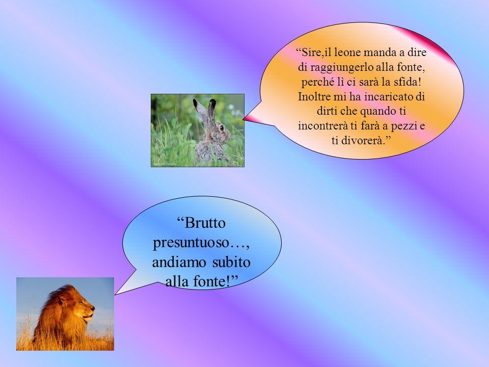 Potente re degli animali, guarda in questo pozzo, perché laltro leone vive qui… Fu così che il leone pagò i suoi misfatti: annegò nella fonte, vittima della sua stessa superbia e presunzione.
