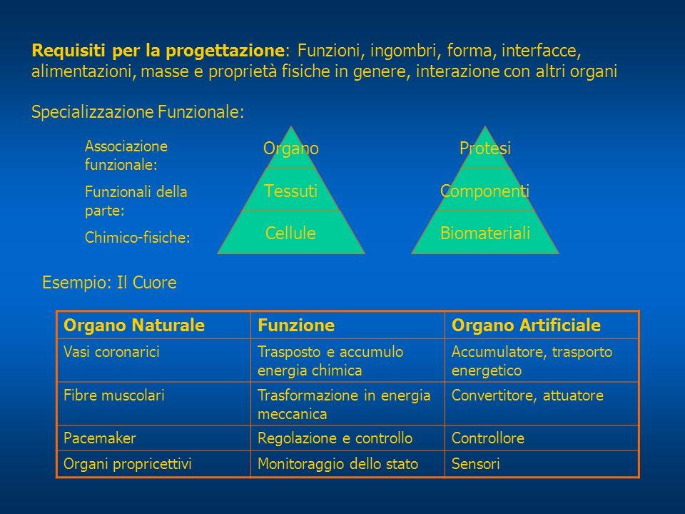 1 livello cellule/materiali 2 livello tessuti/comp.