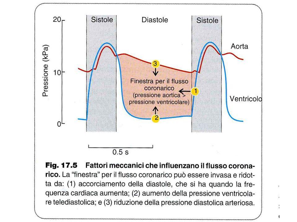 RISERVA CORONARICA Curva pressione-flusso in presenza di autoregolazione (f c ) e durante vasodilatazione massima (f max ) RC f max fcfc