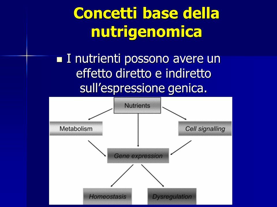 Dietary chemicals 1-ligandi per fattori di trascrizione 3-influenza +/- sulle vie di trasduzione del segnale 2-Alterazione [ substrati-intermedi ] ESPRESSIONE GENICA