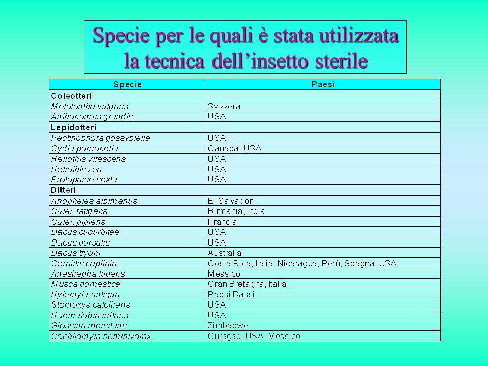 Flavescenza dorataScaphoideus titanus I problemi insoluti