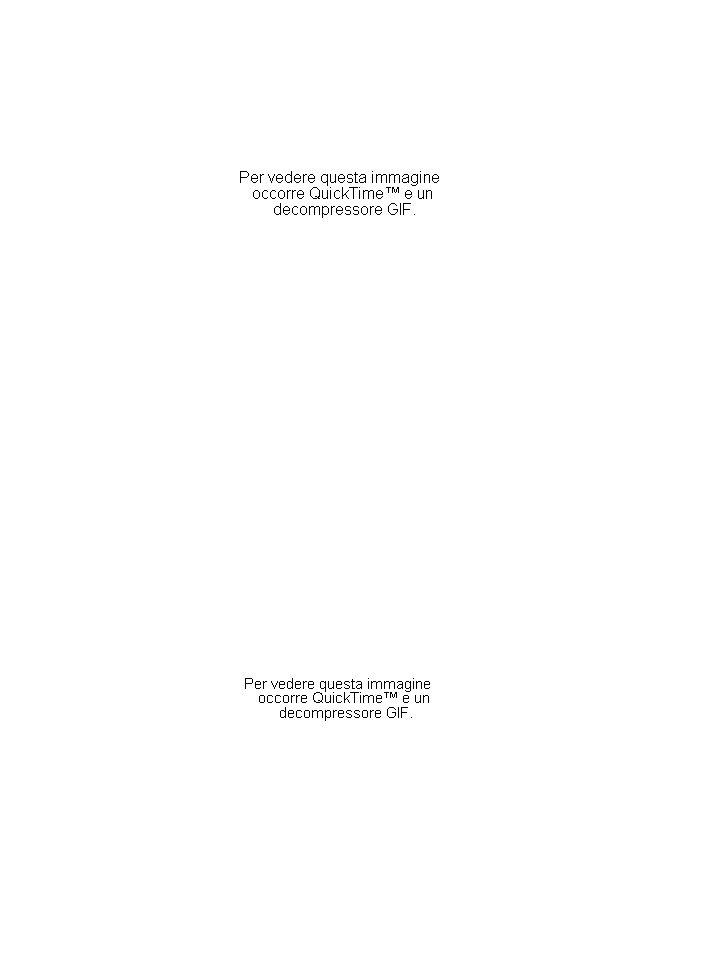 PASSAGGIO SPONTANEO DI MOLECOLE ATTRAVERSO LA MP IN BASE A: GRANDEZZA POLARITA CARICA molecole PICCOLE IDROFOBICHE (NON POLARI) PICCOLE IDROFILE (POLARI) NON CARICHE GRANDI IDROFILE (POLARI) NON CARICHE PICCOLE CARICHE (IONI) O2O2 CO 2 N2N2 BENZENE H 2 O UREA GLICEROLO ETANOLO GLUCOSIO SACCAROSIO H + Na + K + Ca ++ Cl - Mg ++ HCO 3 - MP DIFFUSIONE SEMPLICE E OSMOSI (H 2 O ) PROTEINE PER IL TRASPORTO TRASPORTO DI MEMBRANA