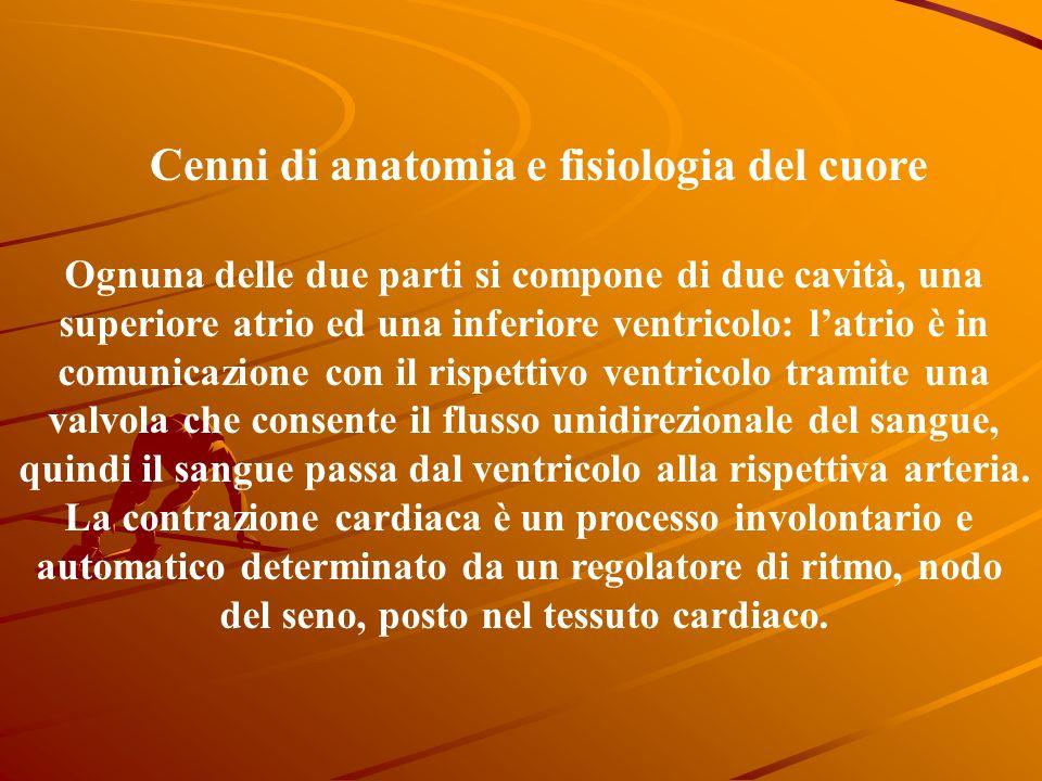 Ognuna delle due parti si compone di due cavità, una superiore atrio ed una inferiore ventricolo: latrio è in comunicazione con il rispettivo ventricolo tramite una valvola che consente il flusso unidirezionale del sangue, quindi il sangue passa dal ventricolo alla rispettiva arteria.