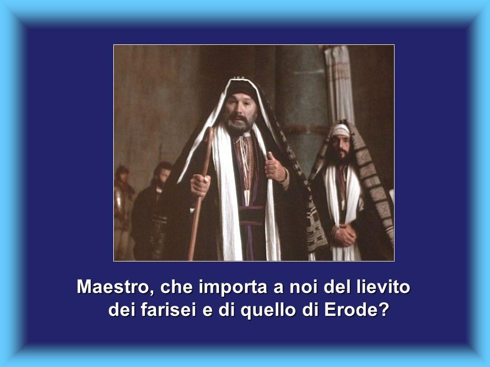 Maestro, che importa a noi del lievito dei farisei e di quello di Erode?