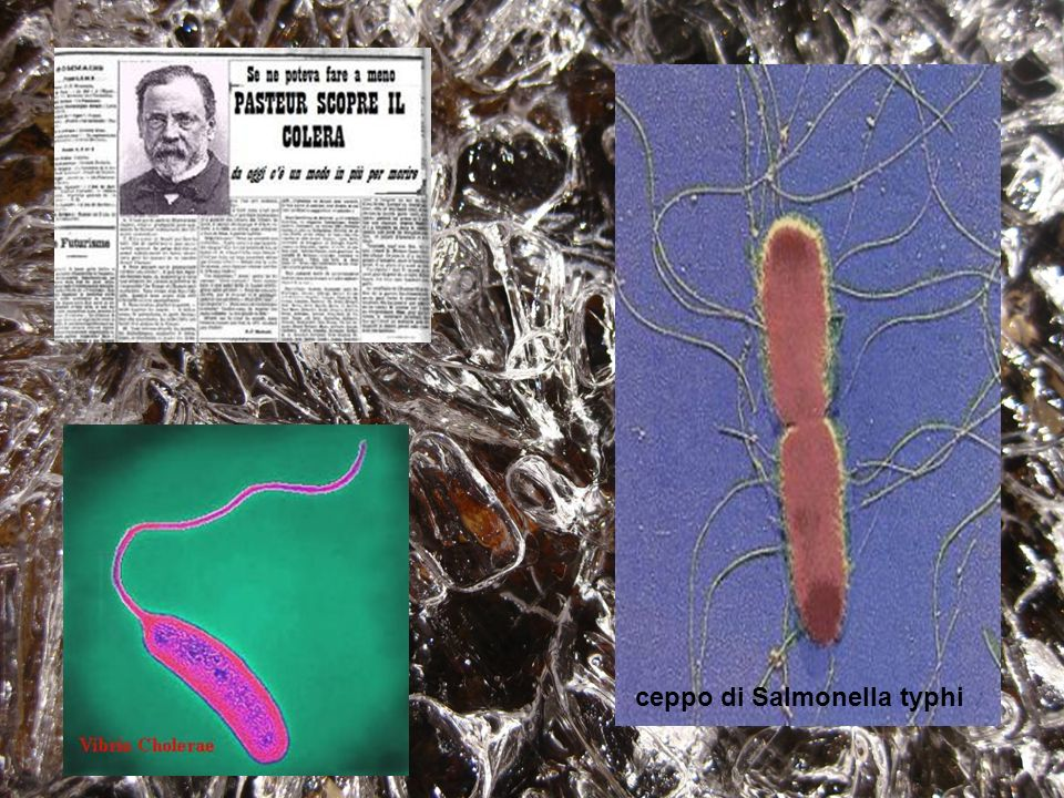 Dott.Mantegazza Paolo Microbiologo Louis Pasteur Si credeva lacqua PURA contenesse una miriade di microbi Nel 1857 Pasteur smentisce Nel1915 si inizia a vendere lacqua dichiarata sana in bottiglia