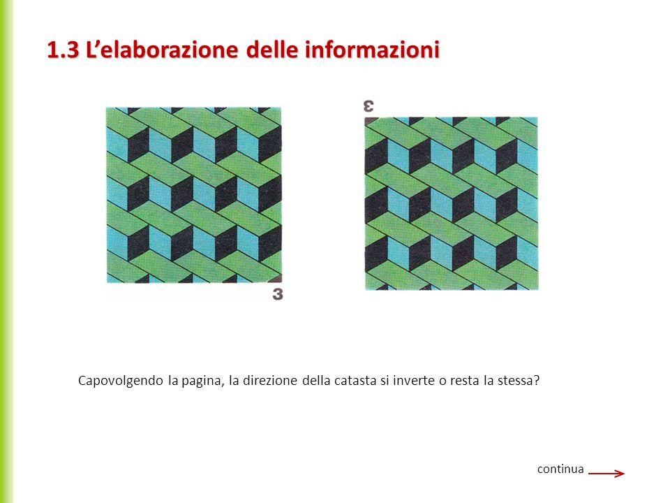 continua Le illusioni ottiche fin qui analizzate possono essere spiegate nel modo seguente: 1 - Fin dalla nascita l occhio vede una gran quantità di oggetti, e invia al cervello gli stimoli corrispondenti.