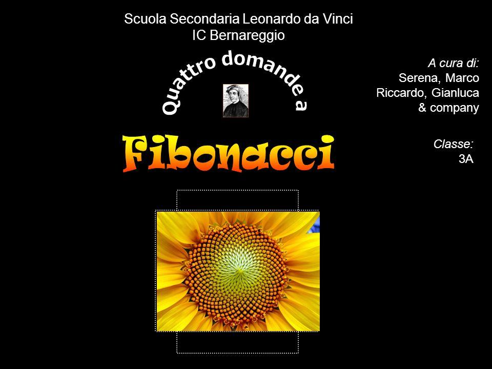 A cura di: Serena, Marco Riccardo, Gianluca & company Scuola Secondaria Leonardo da Vinci IC Bernareggio Classe: 3A