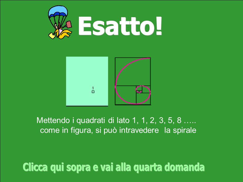 Mettendo i quadrati di lato 1, 1, 2, 3, 5, 8 ….. come in figura, si può intravedere la spirale