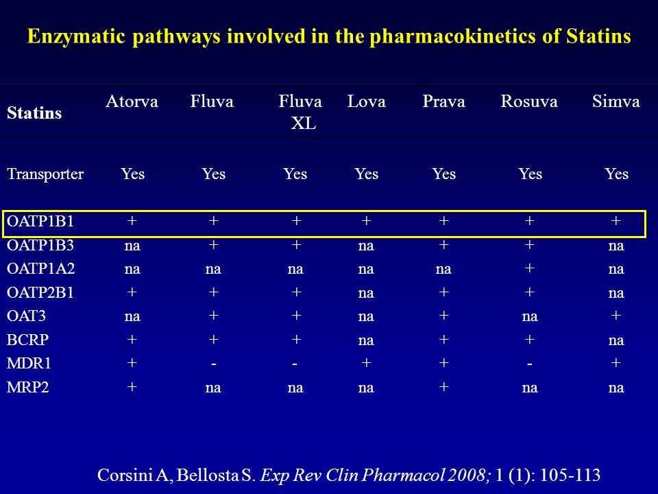 G Schmitz Clin Chem Lab Med 2003, 41:581-589 Statin Metabolism and Elimination