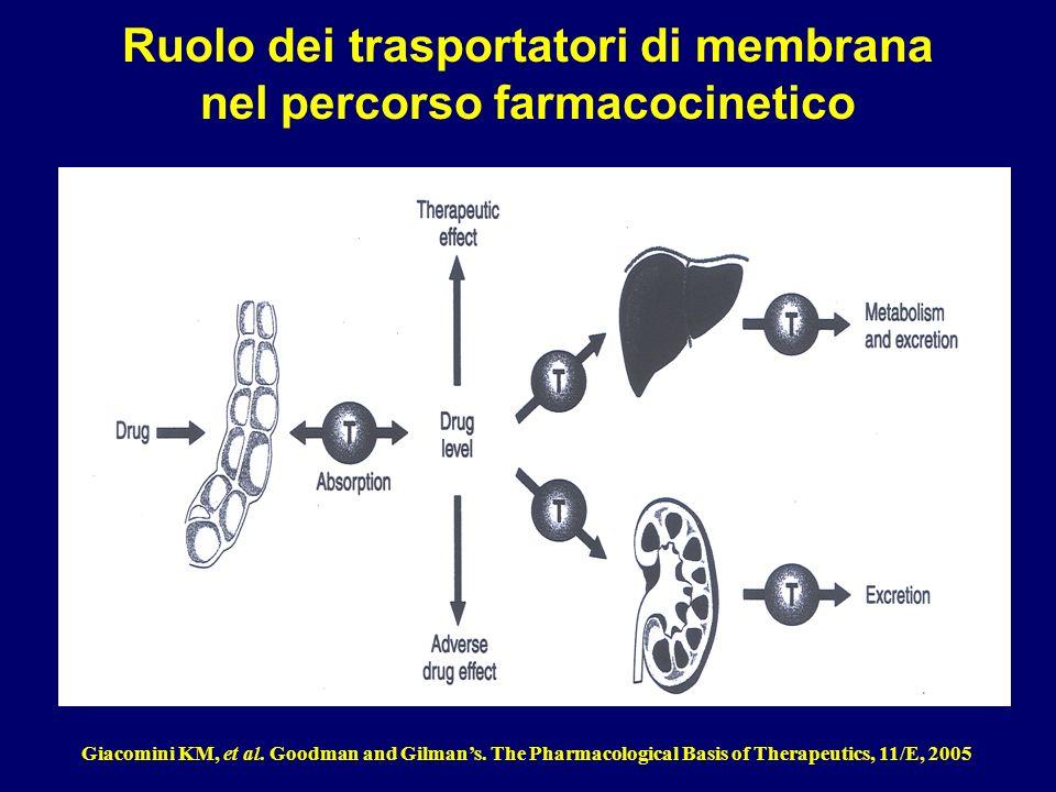 Le proteine di trasporto Captazione : facilitano lentrata di sostanze (farmaci) allinterno delle cellule.