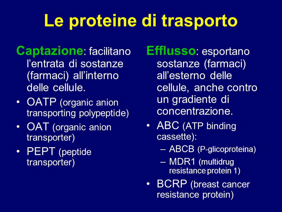 Tissue localization and role of transport proteins in drug disposition A.