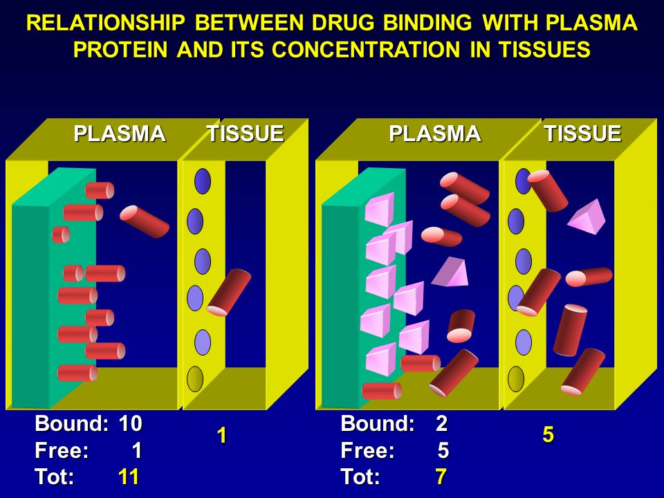 Examples of clinically significant drug interactions which have been attributed to plasma protein binding displacement