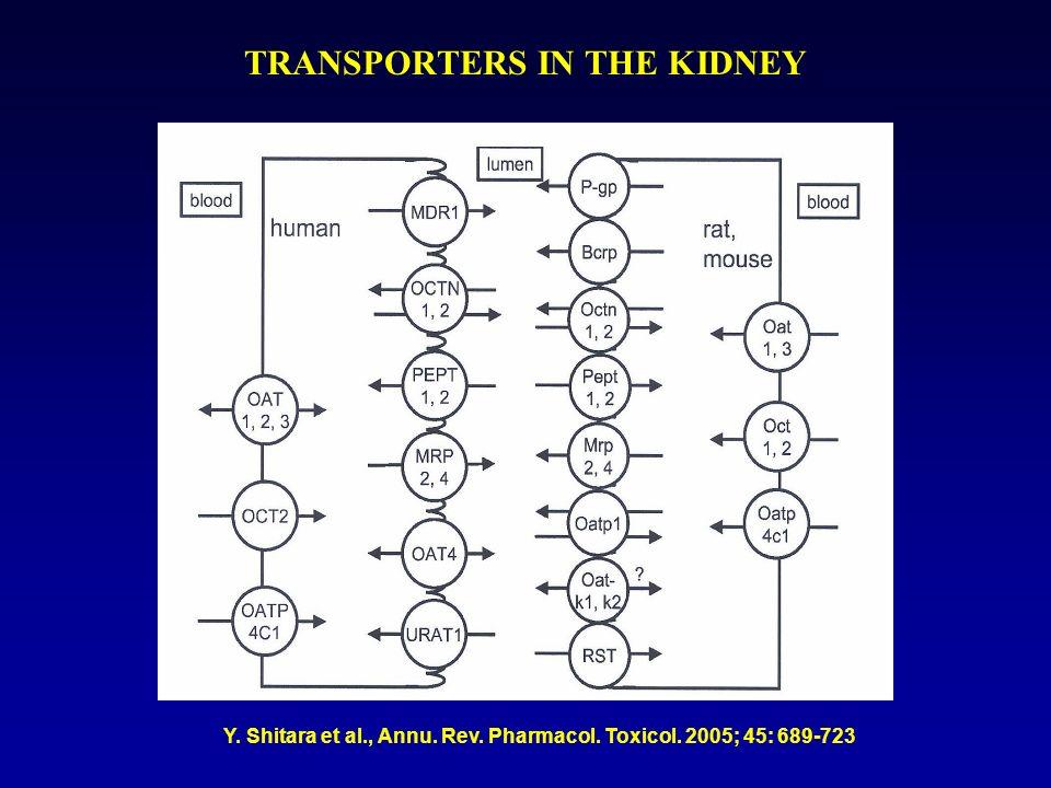 Esempi di interazioni nellescrezione renale di farmaci