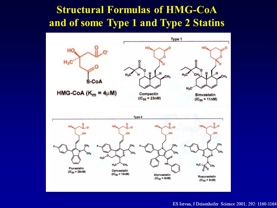 Statins Pharmacokinetic Properties 1,2 Fermentation-DerivedSynthetic 1.