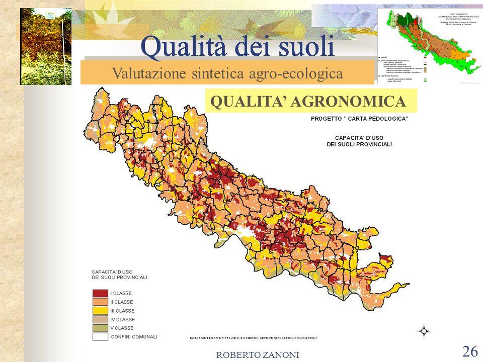 ROBERTO ZANONI 27 Qualità dei suoli Le carte evidenziano come i suoli provinciali hanno in prevalenza un alta qualità agronomica, come rappresentato dalla vasta, continua area di classi I e II di capacità d uso.