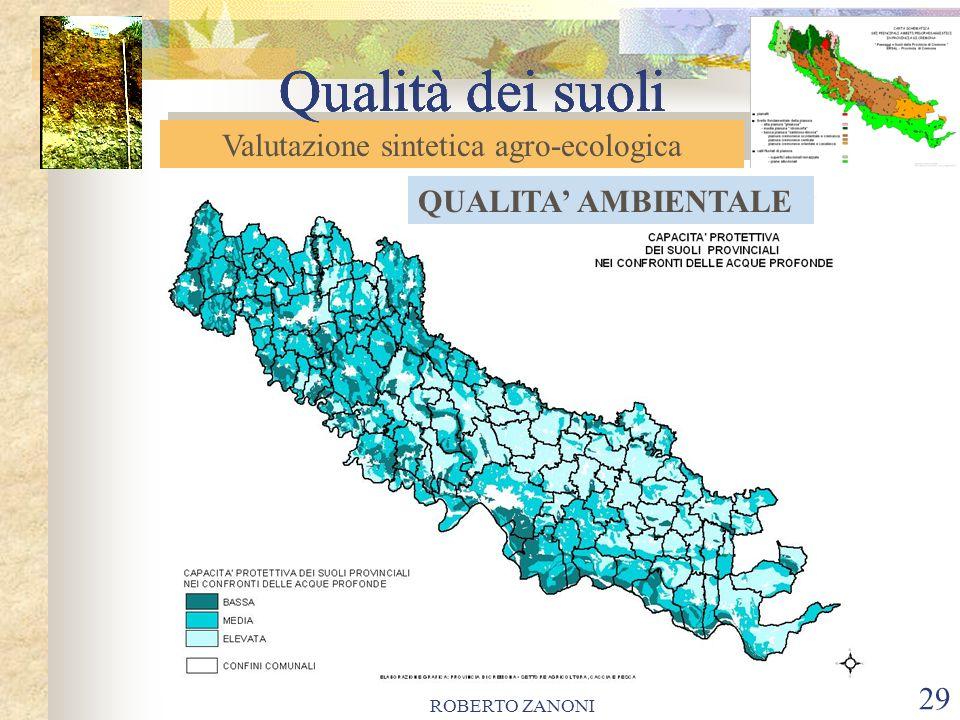 ROBERTO ZANONI 30 Qualità dei suoli Le carte evidenziano la concentrazione di suoli ad elevata capacità protettiva (qualità ambientale) in ambito provinciale, in primis nella porzione centro- meridionale del livello fondamentale della pianura.