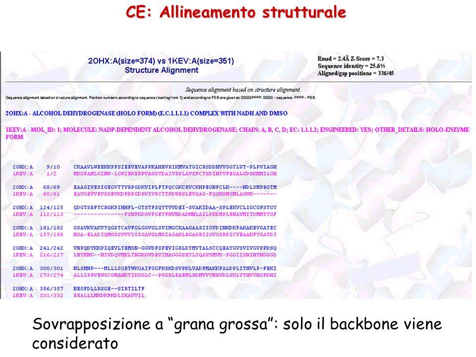 Classificazioni gerarchiche CATH http://www.biochem.ucl.ac.uk/bsm/cath_new/index.html http://www.biochem.ucl.ac.uk/bsm/cath_new/index.html C: Class Composizione in struttura secondaria A: Architecture Forma complessiva, ignora connettività della catena T: Topology Si tiene in considerazione la connettività H: Homologous Famiglie di omologia (famiglie derivanti da un ancestore comune) Possiamo classificare tassonomicamente i domini ?