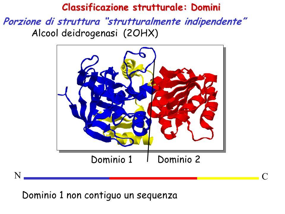 Confronto tra strutture Possiamo confrontare domini strutturali di diverse proteine.