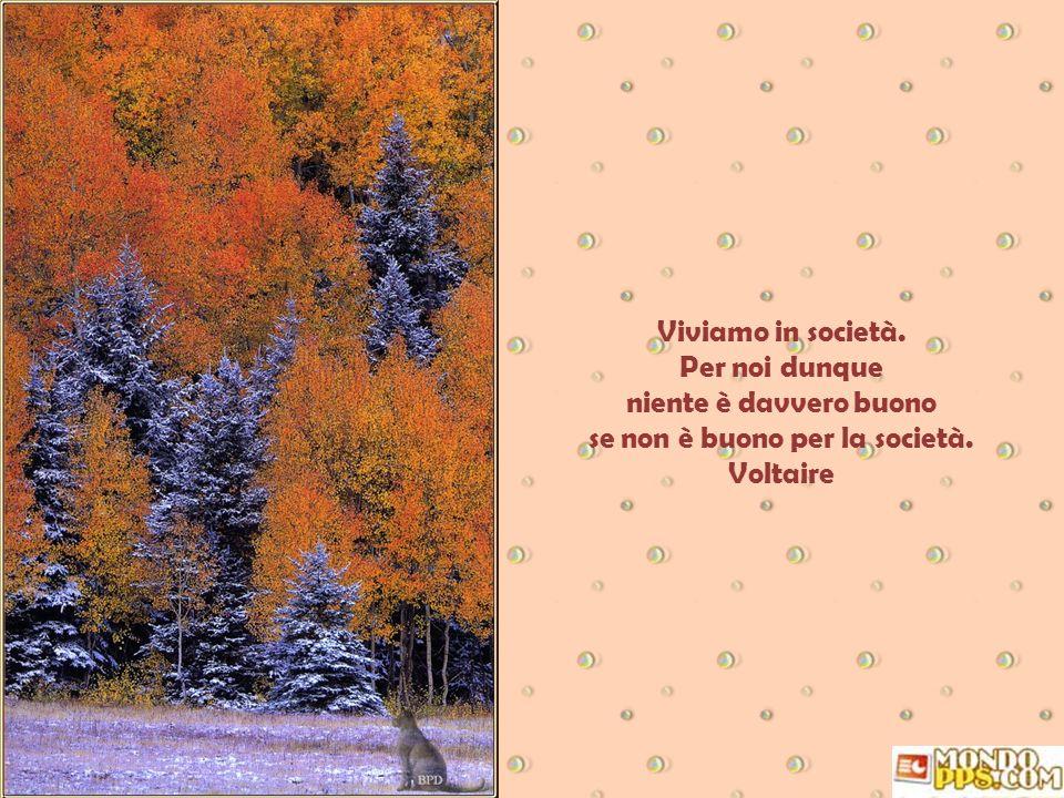 Viviamo in società. Per noi dunque niente è davvero buono se non è buono per la società. Voltaire