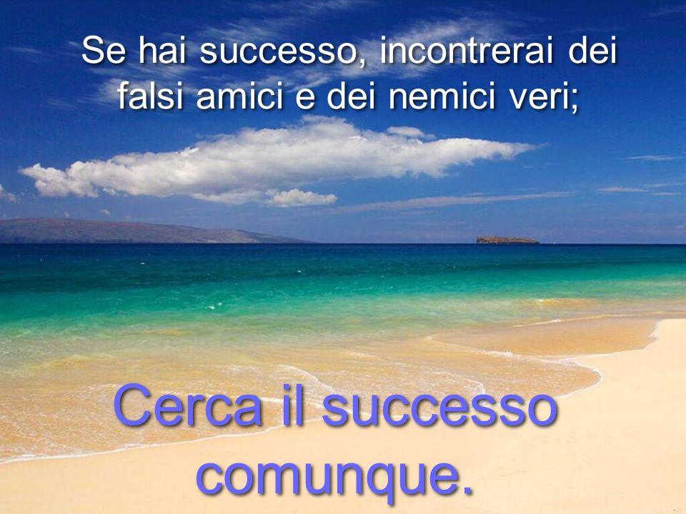 Se hai successo, incontrerai dei falsi amici e dei nemici veri; Se hai successo, incontrerai dei falsi amici e dei nemici veri; Cerca il successo comunque.