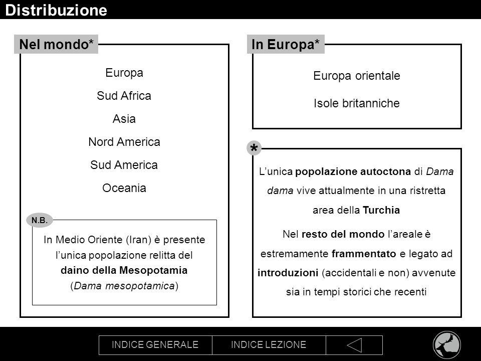 INDICE GENERALEINDICE LEZIONE Distribuzione Fonte Pedrotti L., Dupré E., Preatoni D.