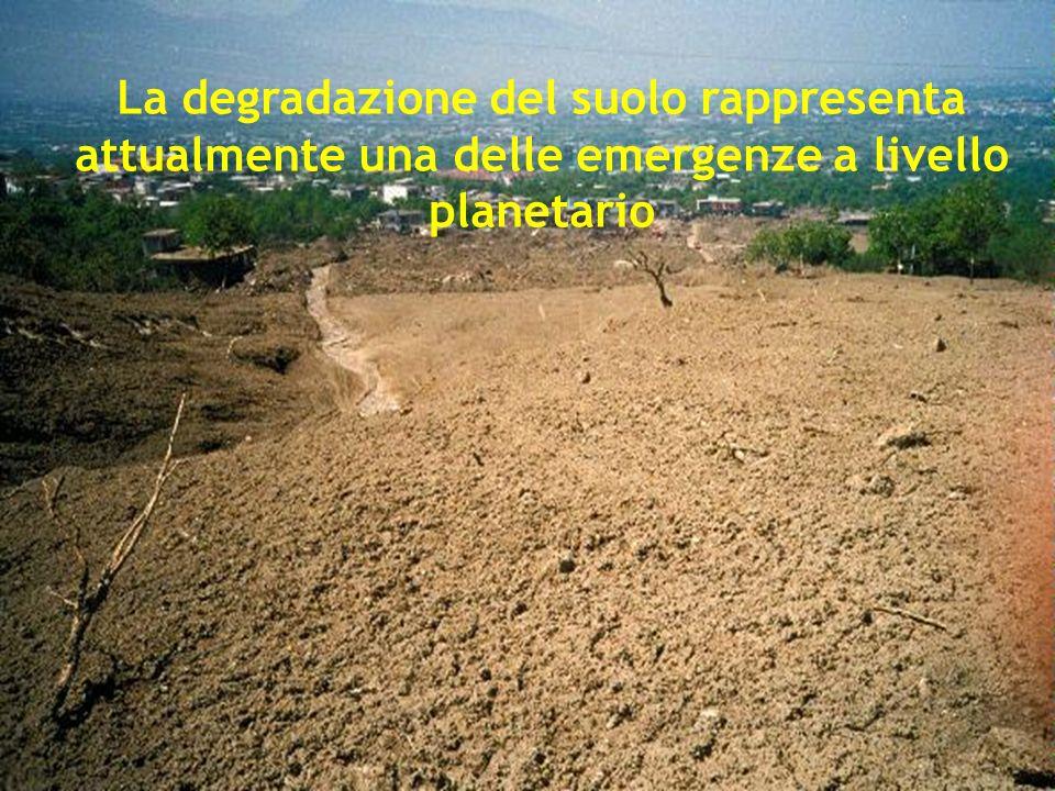 La degradazione del suolo rappresenta attualmente una delle emergenze a livello planetario