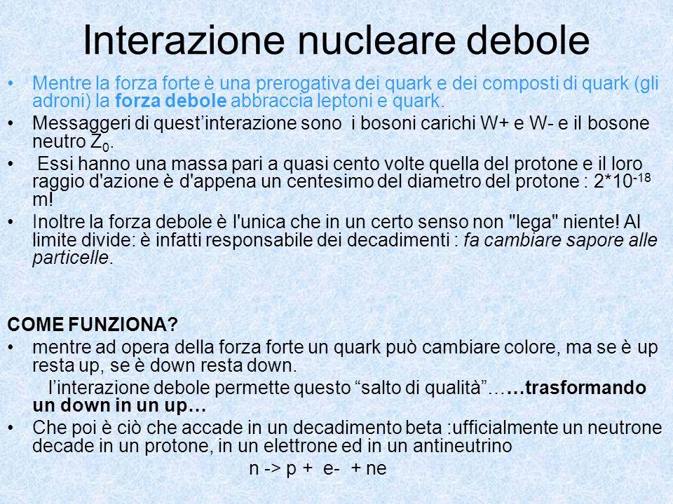 Interazione nucleare debole