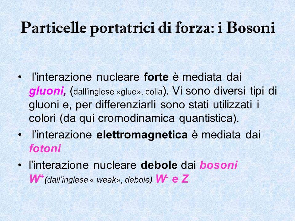Particelle portatrici di forza: i Bosoni