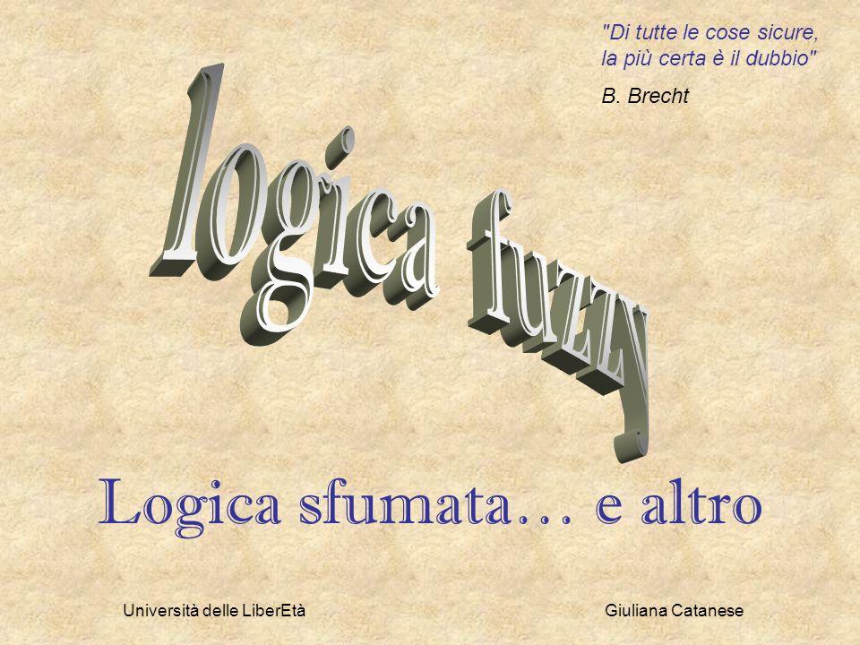 Logica sfumata… e altro