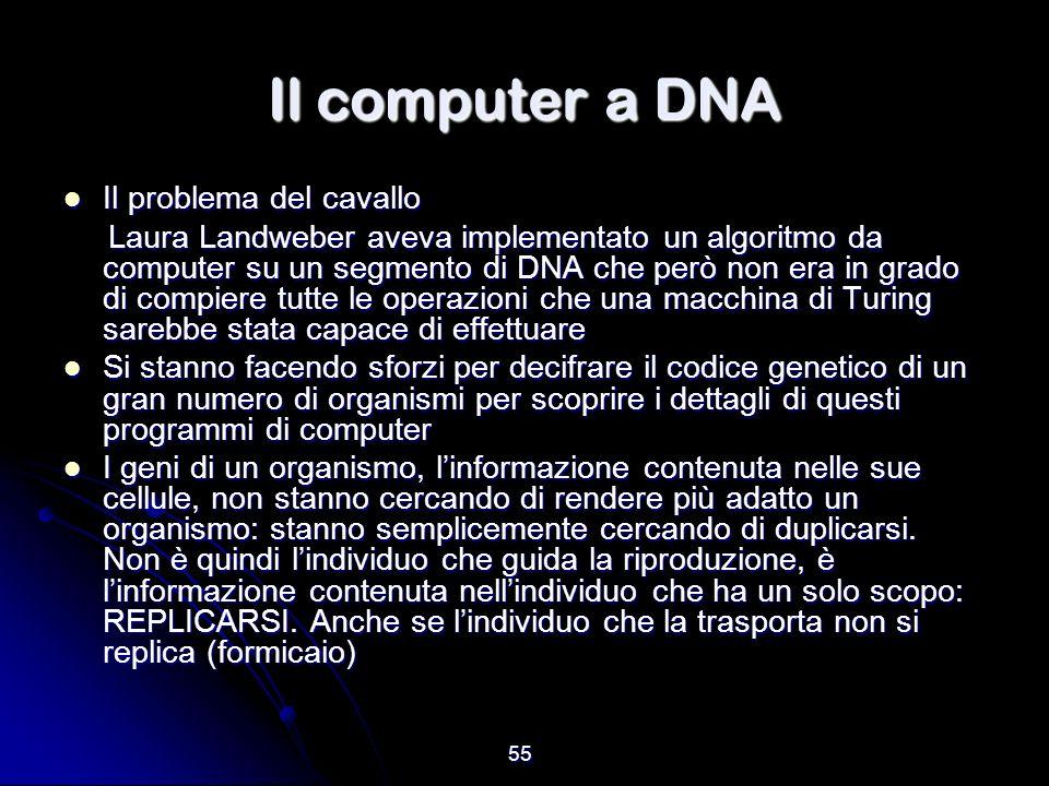 Il computer a DNA Il problema del cavallo