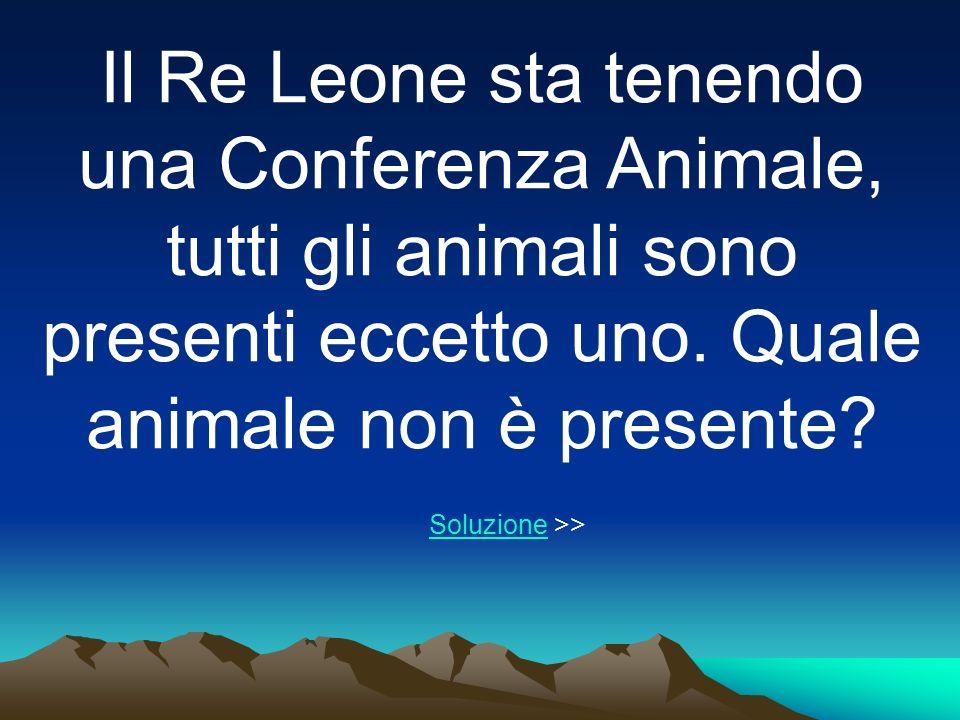 Il Re Leone sta tenendo una Conferenza Animale, tutti gli animali sono presenti eccetto uno. Quale animale non è presente
